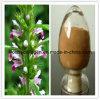Extracto de Motherwort, Fitoterapia chinesa pura, Fitoterapia, Não toxicidade
