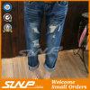 Le donne hanno strappato i vestiti dei pantaloni di estate della mutanda del denim della mutanda dei jeans