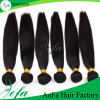Exellentの品質の加工されていない未加工バージンの供給の巻き毛の人間の毛髪