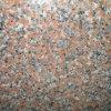 Lastra poco costosa cinese Marple G562 rosso del granito