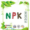 NPK水溶性肥料15-5-30のプラスのほう素はトレースしElent、