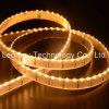 LED는 335SMD 120D 9.6W 높은 빛난 LED 지구 빛을 분리한다