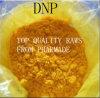 2, poudre de perte de poids de 4-Dinitrophenol DNP
