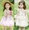 Одежда 2014 детей высокого качества оптовой продажи флористического платья платья выскальзования девушок 5 PCS/Lot