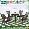 セットされる家具を食事する藤のコーヒーカラー屋外の庭(TG-1289)