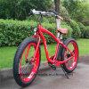 Bici gorda del neumático 48V 500W E (RSEB-506)
