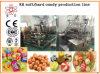 KH 150 het Deponeren van het Suikergoed van het Gebruik van de Fabriek Harde Lijn