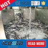 Planta de hielo líquida refrigerada del aseguramiento comercial para la custodia fresca del alimento