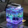 Tanque de peixes da tabela do diodo emissor de luz, mini tanque de peixes