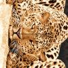 леопард Pigment&Disperse леопарда 100%Polyester напечатал ткань для комплекта постельных принадлежностей