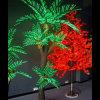 Indicatore luminoso decorativo della palma della via LED delle decorazioni del portello di natale