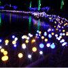 Natale che modific il terrenoare gli indicatori luminosi della sfera della decorazione per il giardino della sosta