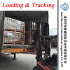 De Dienst van de Lading & van het Vrachtvervoer van de logistiek in Shunde, Dongguan, Zhongshan, Shenzhen, Foshan