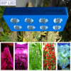 2016 hoogste Rated GIP Bridgelux LED Grow Light met Switches COB Grow Light LED