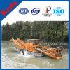 Am meisten benutzt im River Seeweed-Ausschnitt-Boot