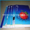 Impresión del PVC para hacer publicidad del tablero