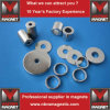 N52 NdFeB permanente Magneten mit Ring-magnetischem Material