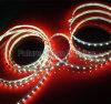 Luce di striscia di SMD3528 LED