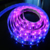 Remote Controller를 가진 SMD5050 Dream Color LED Light Strips