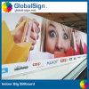 Custom Printing Outdoor PVC Flex Vinyl Banner (LFG35/440)