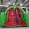 Verde e Red Cartoon Inflatable Slide (Aq911-2)