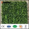 Im Freien Garten-freundliches Natur PET künstliche grüne Blatt-Pflanzen