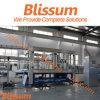 Blissum heiße verkaufende reine Wasser-Füllmaschine-Zeile 2017