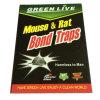 Alta Quanlity Mouse&Rat presa appiccicosa di OEM/ODM