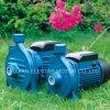 Zusatzwasser-Pumpen-Stadiums-zentrifugale Wasser-Pumpen Cpm-0.37kw automatisches