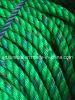 اللون الأخضر مع [بلو&رد] [بّ] حبل [بّد] [ب] حبل