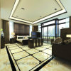 Materiale da costruzione delle mattonelle di pavimento di marmo a Foshan