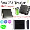 Отслежыватель GPS любимчиков/поголовья с солнечной батареей (V26)
