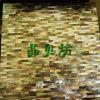 Nahtlose schwarze Lippenshell-Mosaik-Fliese