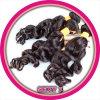 Parrucca nera gallese del monofilamento di Remy Raquel di 2016 modi breve