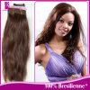 第1 100%ブラジルの自然な人間の毛髪のよこ糸(GP-BNW20 )