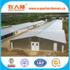 Prefabricated professionnel Steel Structure Poultry House pour Chicken Farming
