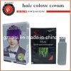 Muestras gratis de tinte para el cabello púrpura Permanente Tinte para el Cabello