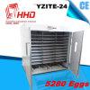 Incubadora do ovo da galinha dos ovos de Hhd 5000 que choca a máquina (YZITE-24)