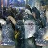 Scultura Drusy del gufo della pietra semi preziosa