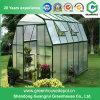 Piccola serra del giardino della migliore di prezzi pellicola del policarbonato