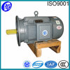 Induction Motors 3 Phase Asynchronous Motor in AC Motors