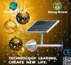 IP65 impermeabilizan la lámpara de calle solar con control ligero inteligente