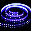 SMD 5060+2835 RGB+W Flexible Strip-96 LEDs/M 6500k