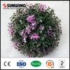 Sfere artificiali viola della barriera del Topiary del nuovo giardino di idee di Sunwing