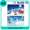 WeihnachtsKreditkarte USBFlash Drive USB Disk Made in China Hot Selling