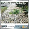 정원, 조경에 사용되는 자연적인 백색 높은 광택나는 것 강 돌 자갈