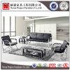 Sofà attendente moderno dell'ospite dell'acciaio inossidabile delle forniture di ufficio (NS-SA06)