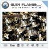 Schoss-Verbindungs-Rohr-Flansch, En1029-1