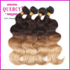 Approvisionnement Top Quality Grade 8A Three Tone Color Omber Hair Virgin Hair brésilien Virgin brésilien Hair
