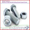 Pente 4.8 d'acier du carbone de DIN933 DIN931 8.8 12.9 boulons de tête Hex